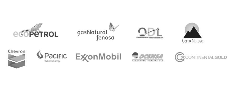 Nuestros clientes Oil & Gas
